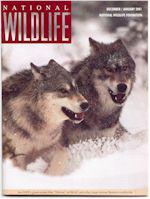 National Wildlife Magazine - Outdoors and RecreationUS magazine subscriptions