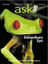 Ask Magazine - ChildrenUS magazine subscriptions