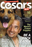 Cesar's Way Magazine - Pets and AnimalsUS magazine subscriptions