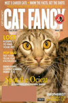 Catster (Formerly Cat Fancy) Magazine