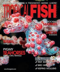 Tropical Fish Hobbyist Magazine Subscription